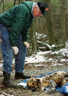 The science of finding buried bodies