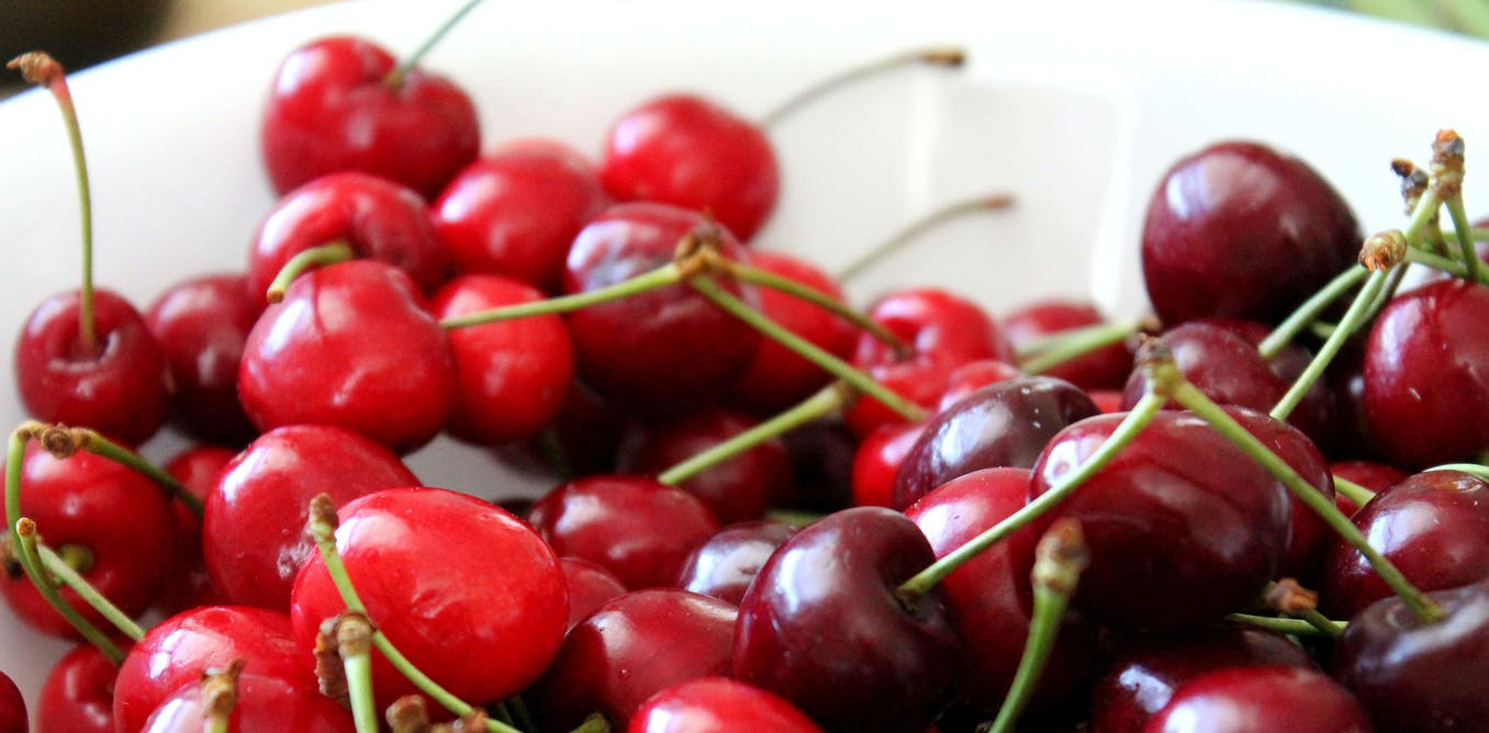 best service 56fd6 71cce Cherry on top  summer fruits are also good for the brain