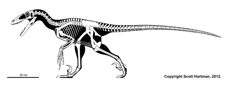 Six amazing dinosaur discoveries that changed the world
