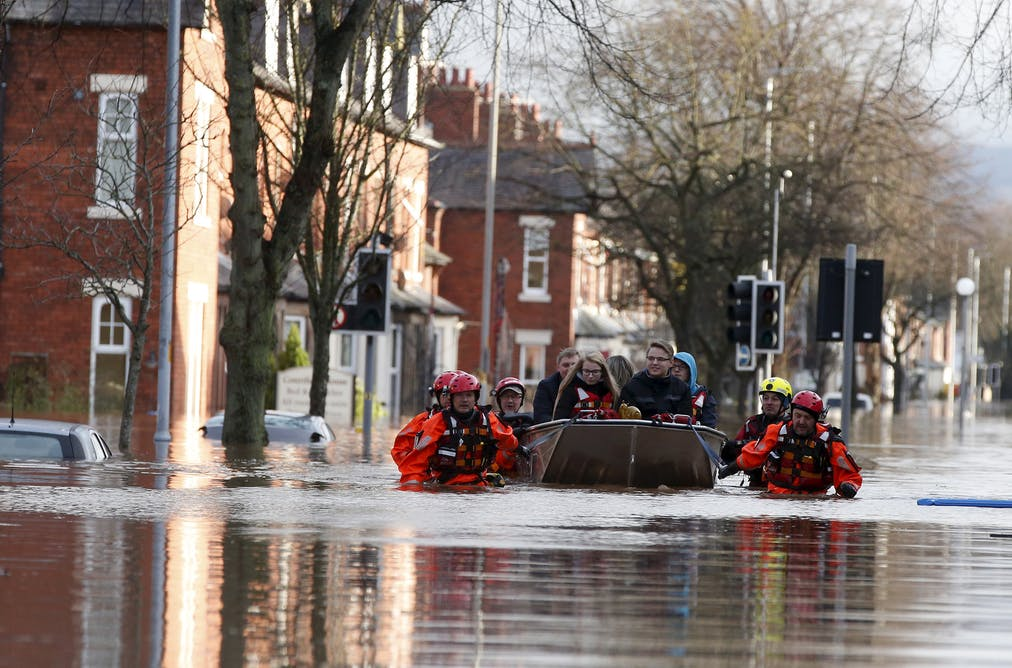 can we really prevent floods by planting more trees  why do flood defences fail