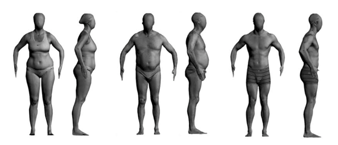 Rank The Bodies In Order Of Fatness Author Provided You Will Recall That  You Calculate Your Bmi