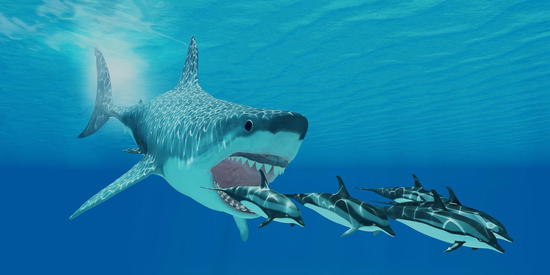 Giant monster Megalodon sharks lurking in our oceans: be ...