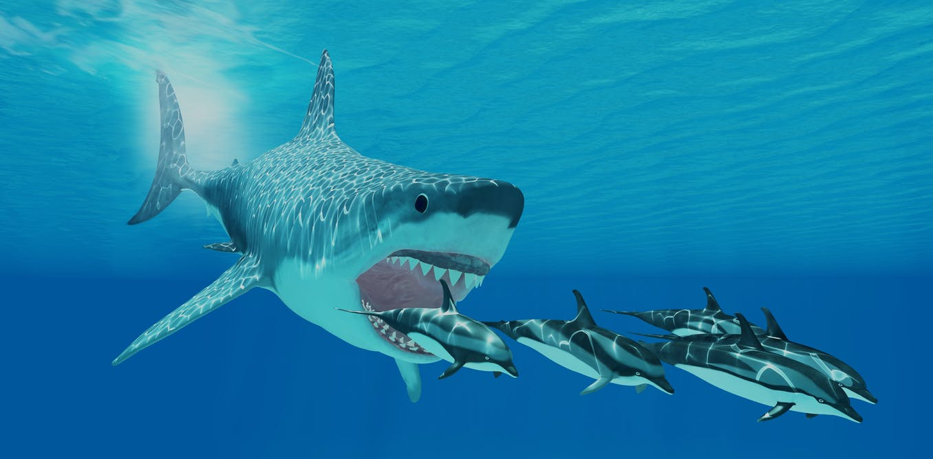 Giant Monster Megalodon Sharks Lurking In Our Oceans Be