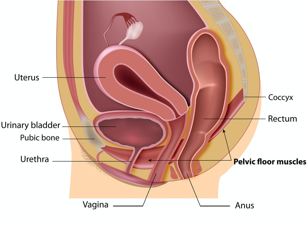Urinary Incontinence Can Be A Problem For Women Of All Ages But