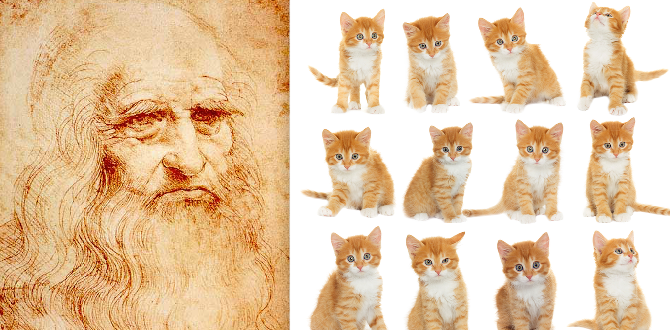 why leonardo da vinci would have aced the internet cat craze image 20160209 12606 1btlj2g