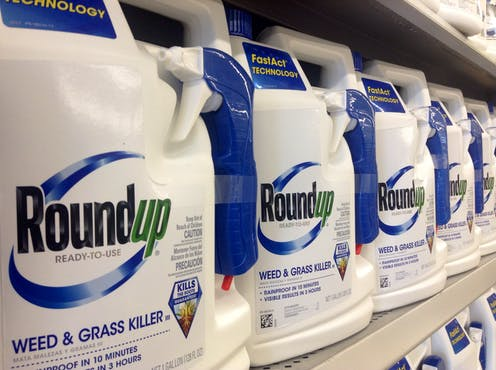 Council workers spraying the weed-killer glyphosate in