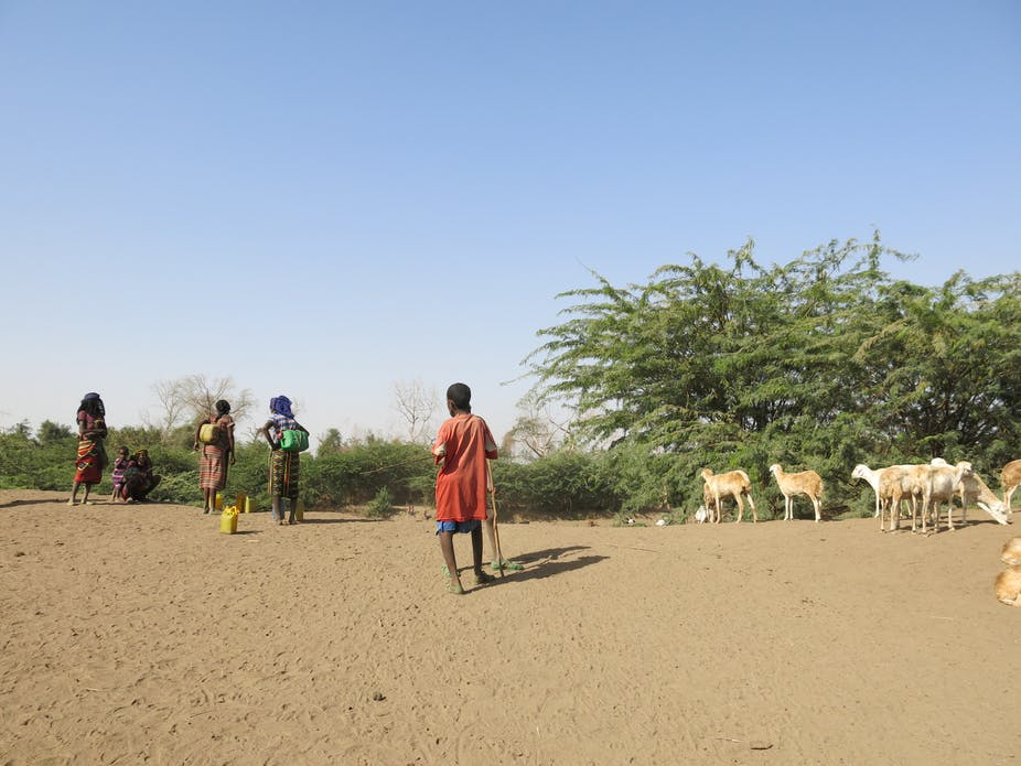 c344e55fdaab4 Lessons from semi-arid regions on how to adapt to climate change