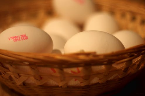 Why women's eggs run out and what can be done about it
