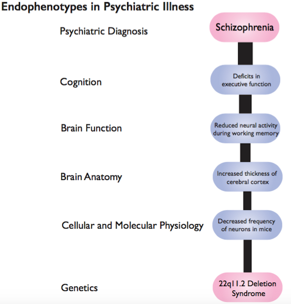 New research is connecting genetic variations to schizophrenia and ...