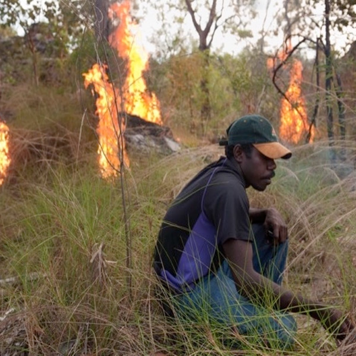 Indigenous innovation could save a billion tonnes of