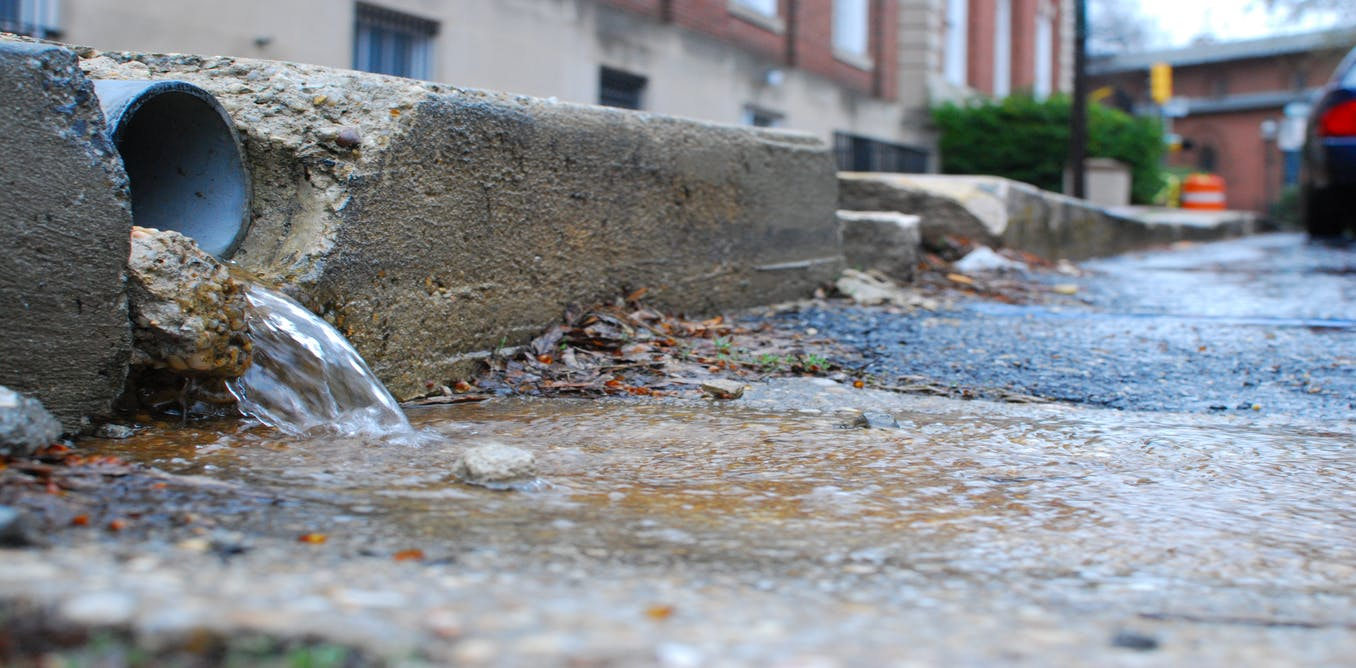How your garden could help stop your city flooding