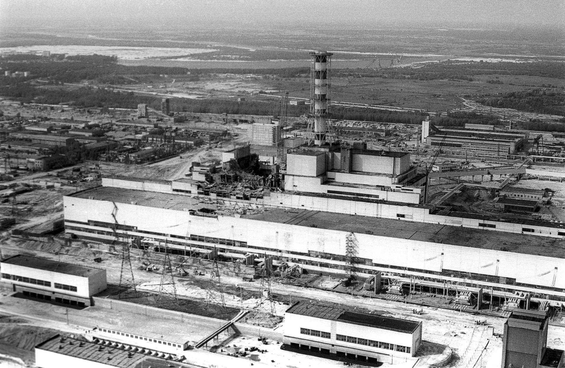 chernobyl effects on soil