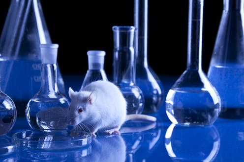 Testing drugs on animals could soon be a thing of the past