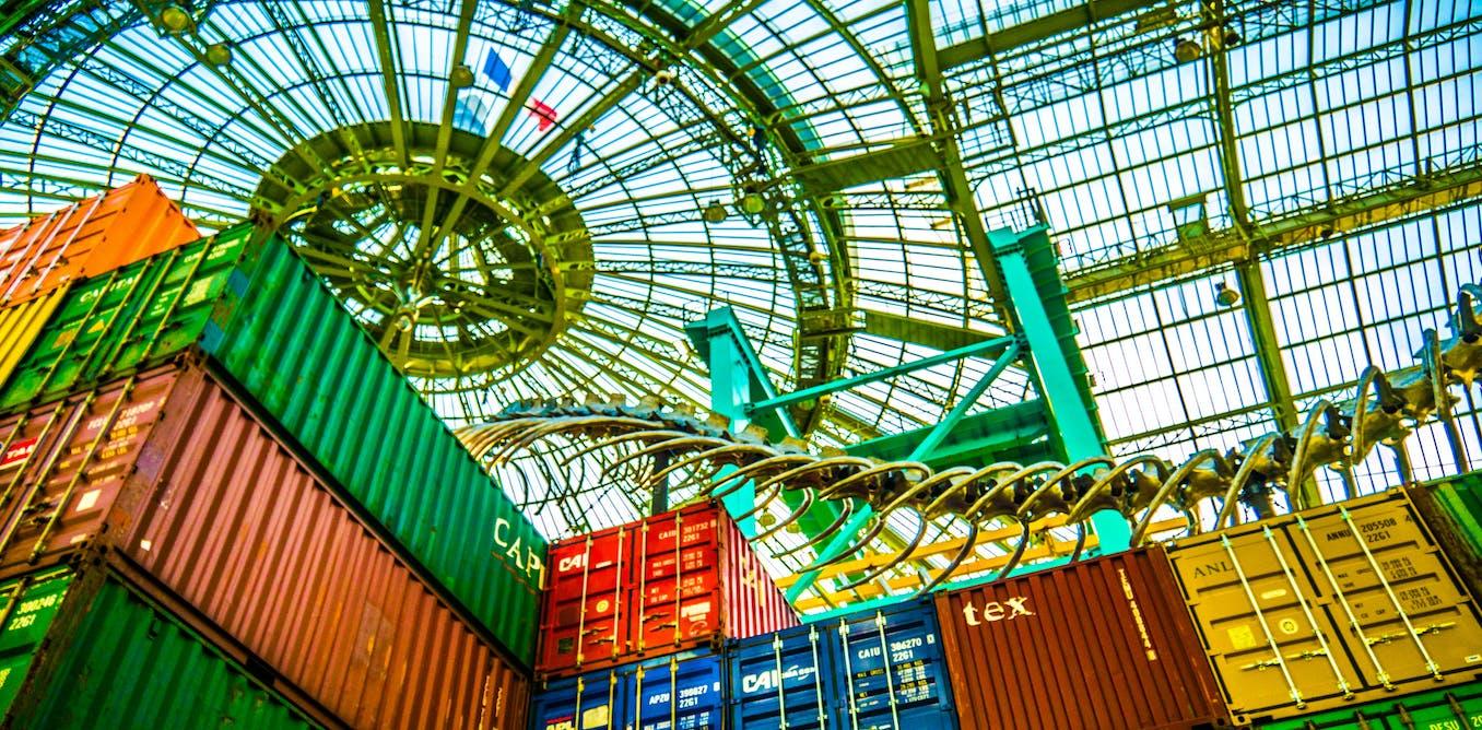 L conomie globale du conteneur de 20 pieds for Conteneur economique