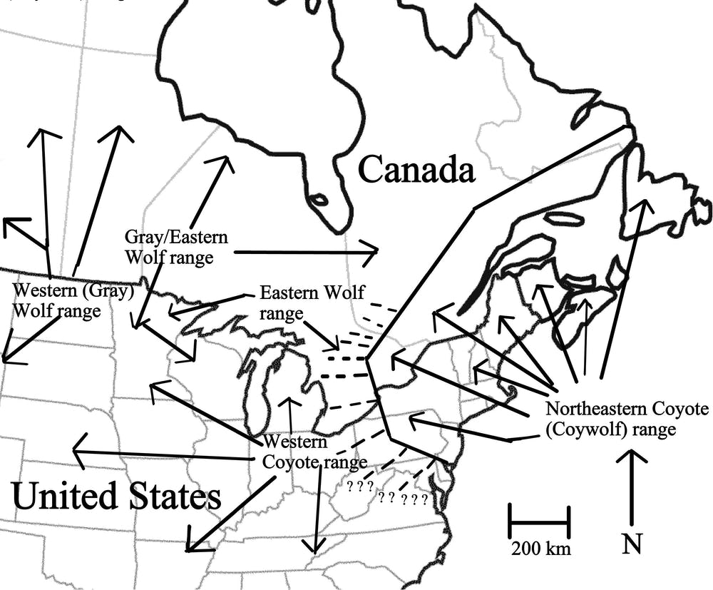 Origins Dog Food Locations