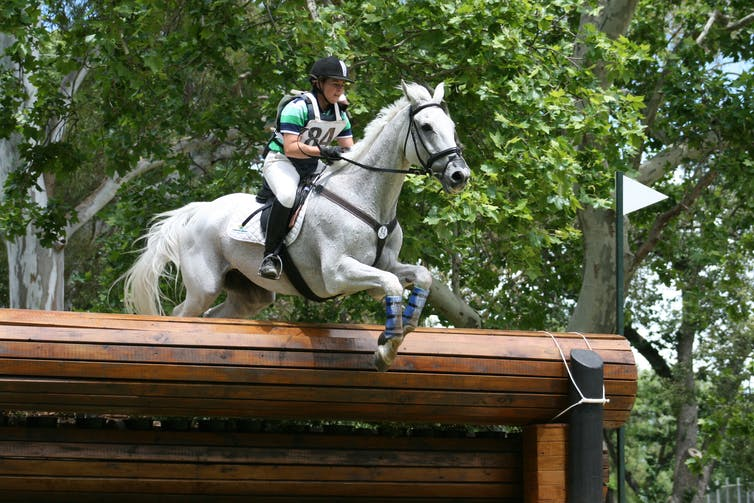 A rider clearing a jump in a local eventing event. How risky is horse riding?