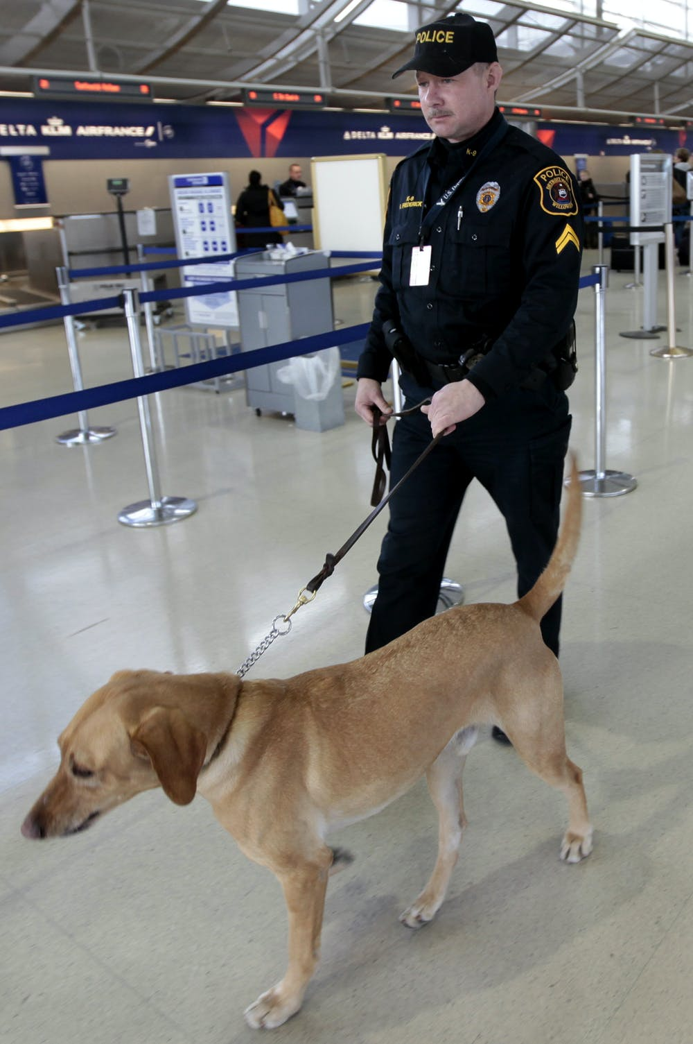 Can Next Generation Bomb Sniffing Technology Outdo Dogs On Electronic Circuit Diagram Canines Are Security Partners At Airports Rebecca Cook Reuters