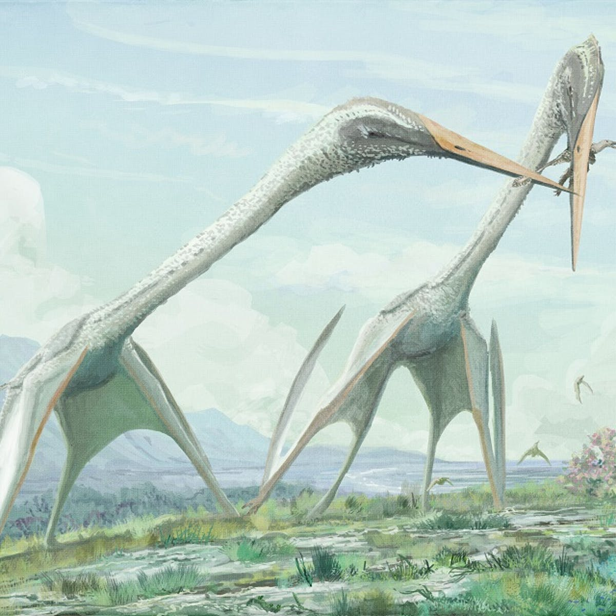 Pterosaurs should have been too big to fly – so how did they