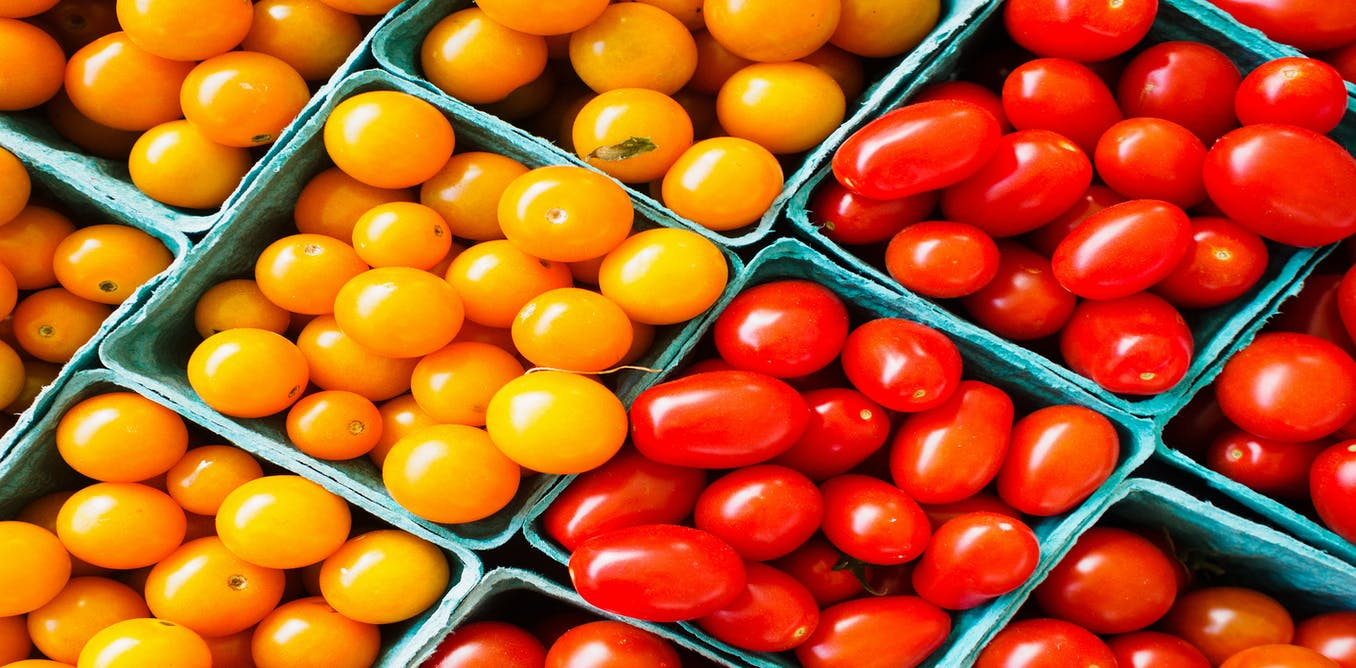food security essays