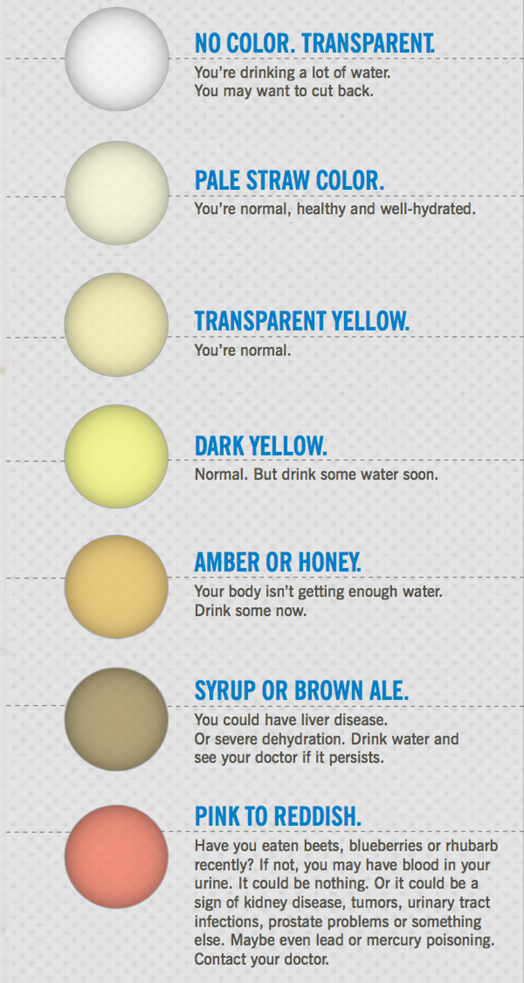Health Check What Your Pee And Poo Colour Says About Your