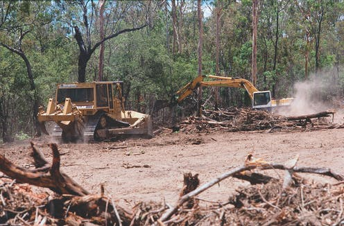 Image result for land clearing