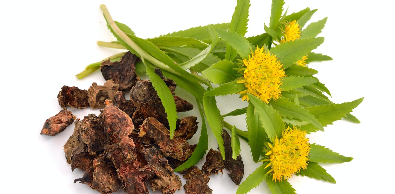 British herbal medicine association - Up To 40 Of Some Herbal Supplements Are Mislabelled Or Contain Adulterants