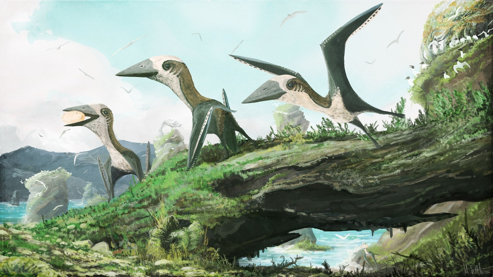 Our new pterosaur fossil shows birds and small reptiles flew side by side