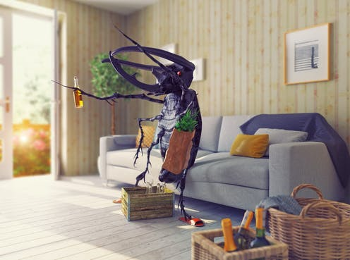 Pleasant Filthy Rich Insects Prefer To Live In Wealthier Houses Home Interior And Landscaping Spoatsignezvosmurscom