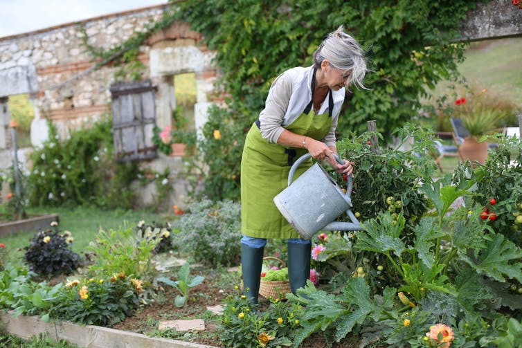 The science is in: gardening is good for you