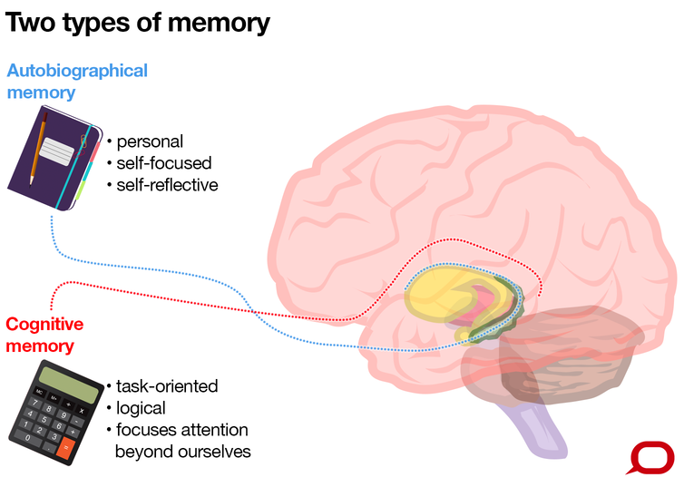 The emotion centre is the oldest part of the human brain why is the conversation cc by nd ccuart Image collections