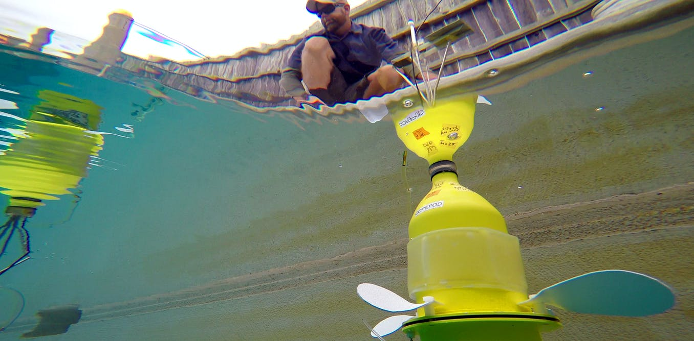 Underwater Robots Help Scientists See Where Marine Larvae Go And How They Get There