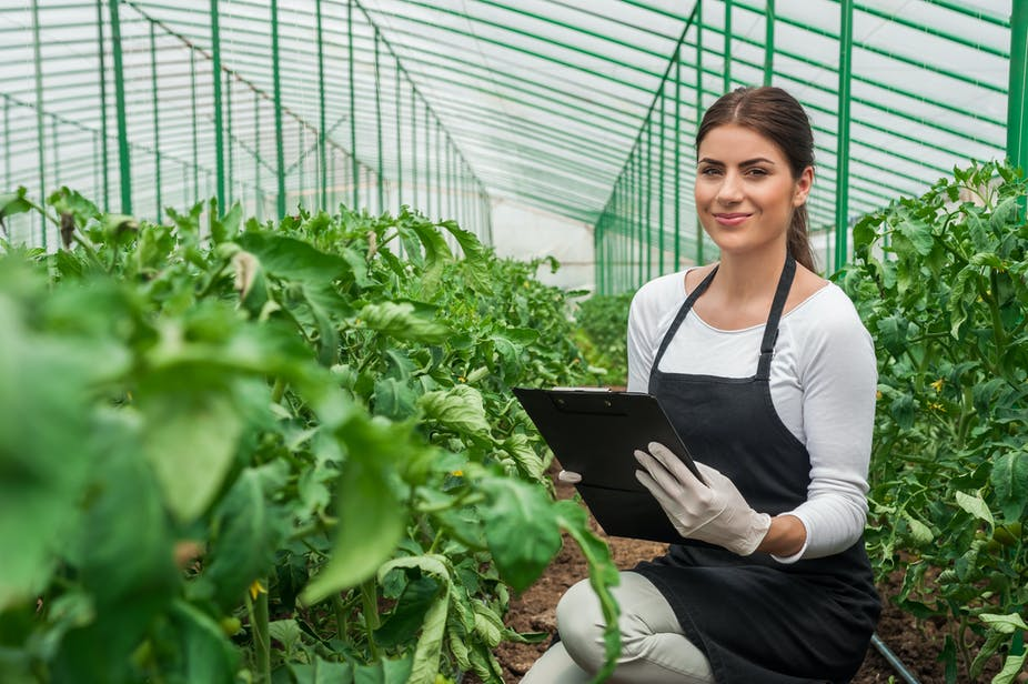 Why ignoring non-seasonal farm workers is a danger to agriculture