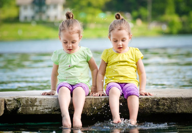 Twin Study Says Genetics To Blame For >> Why It Is Useful To Understand The Role Of Genetics In Behaviour