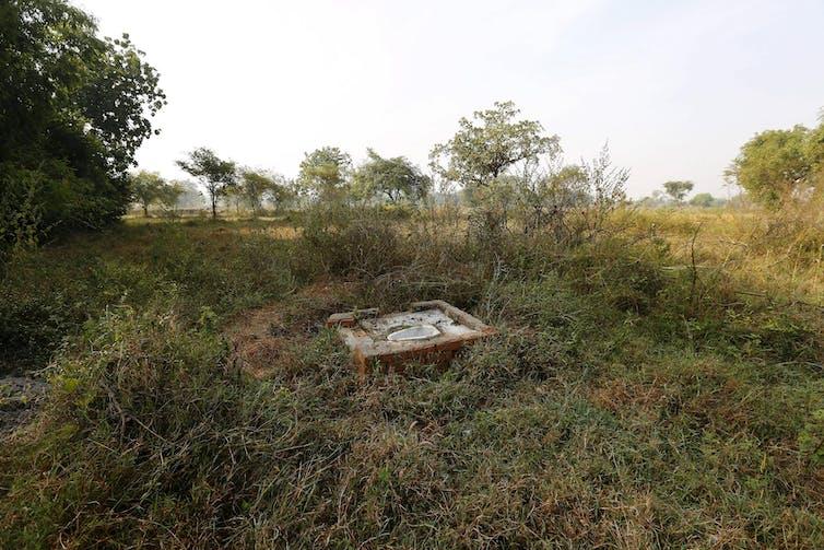 Open defecation spot in rural Chhattisgarh, central India. Adnan Abidi/Reuters