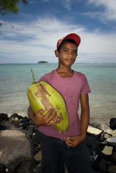 The end of coconut water? The world's trendiest nut is under threat of species collapse-4