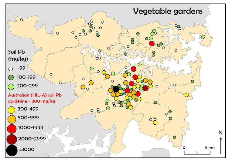 soil lead concentrations of vegetable garden soils from 141 sydney homes map represents one of four areas around homes front yard drip line