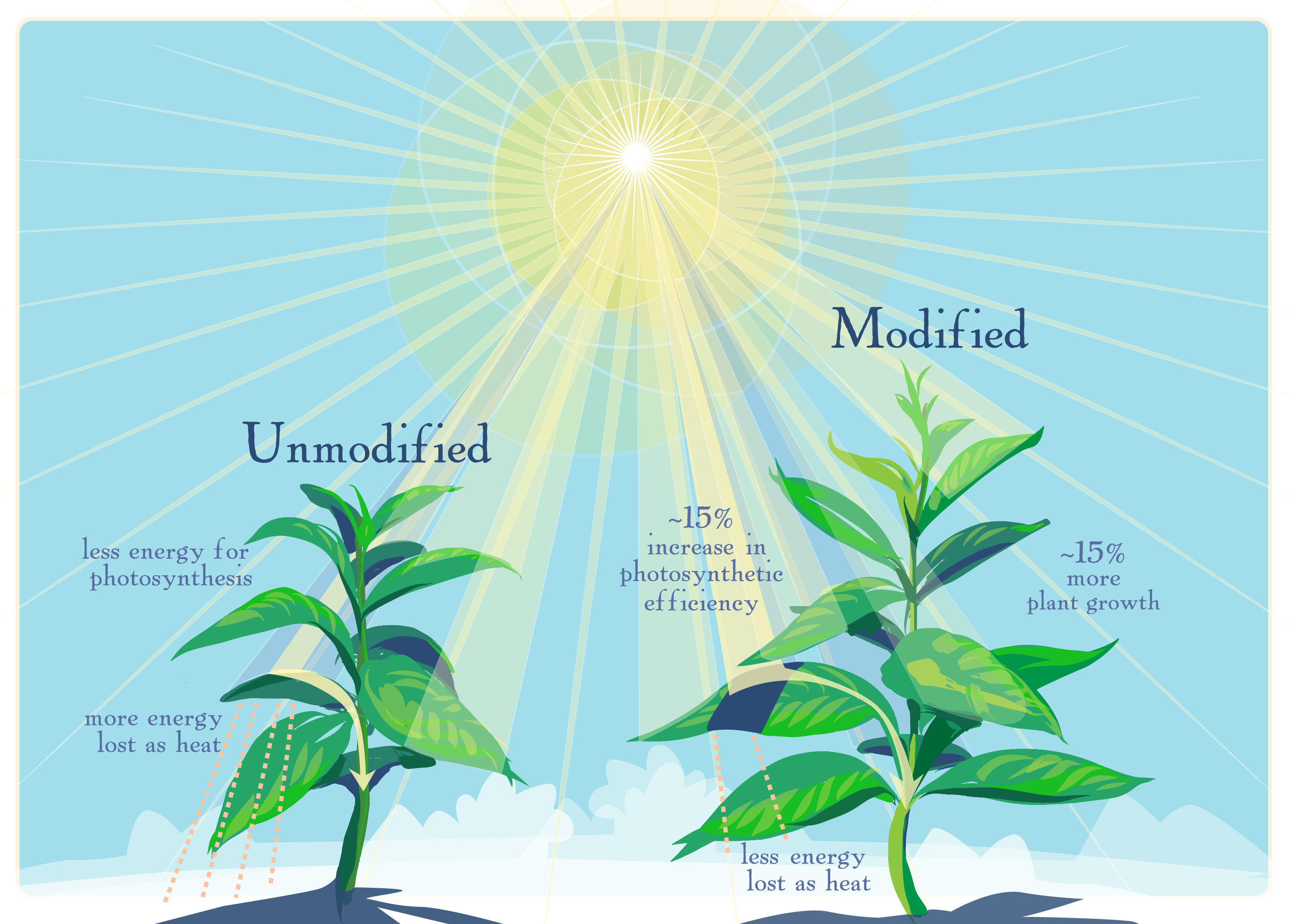 genetically modified food should be limited News about genetically modified food commentary and archival information about genetically engineered food from the new york times.
