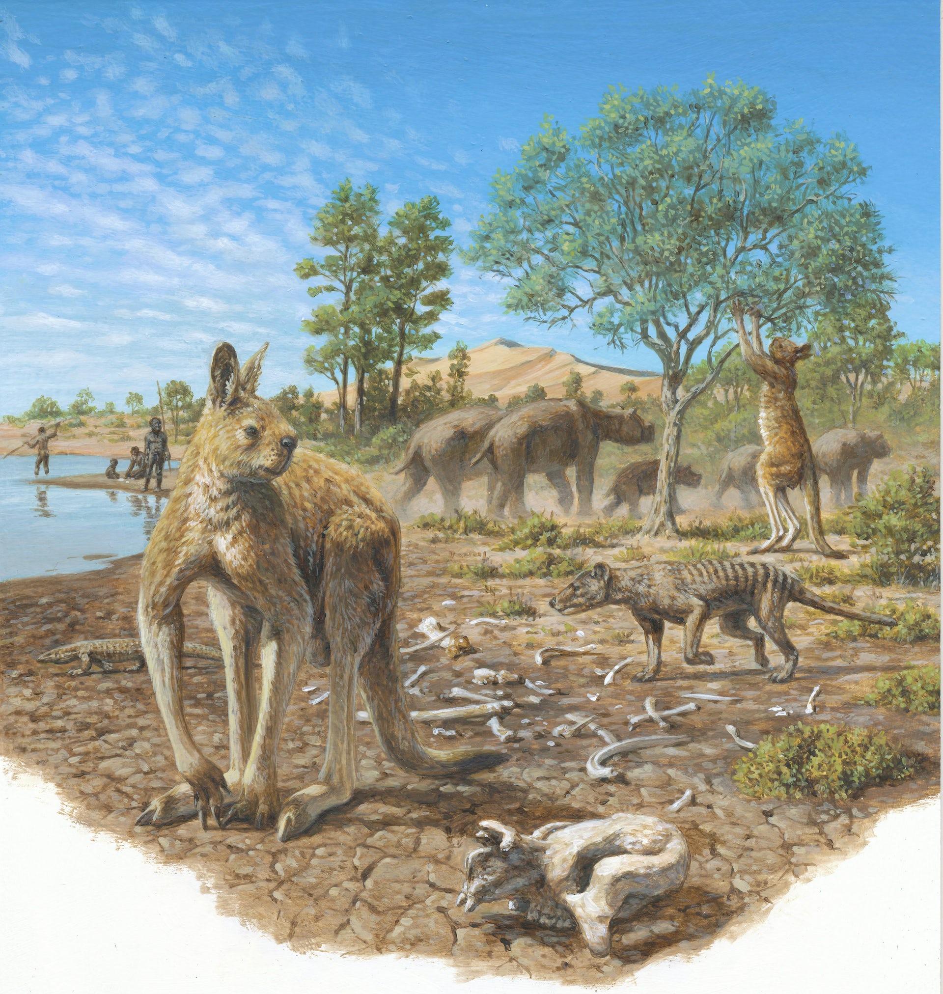 6000 years ago human civilization