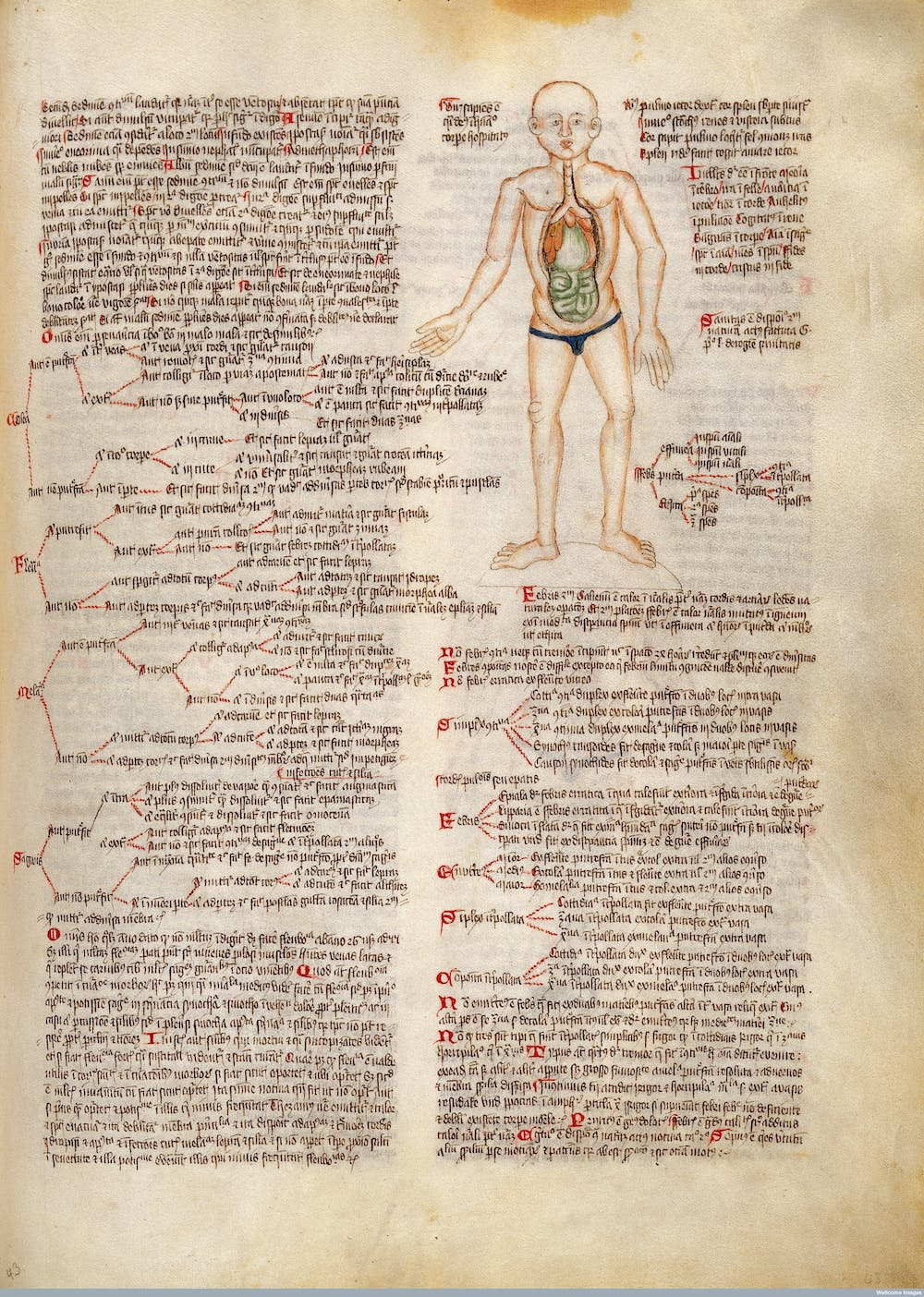 medieval medicine its mysteries and science