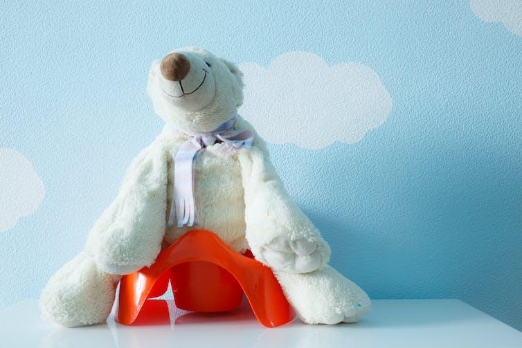 teddy-having-a-poo