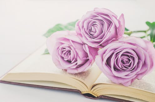How to learn about love from Mills & Boon novels
