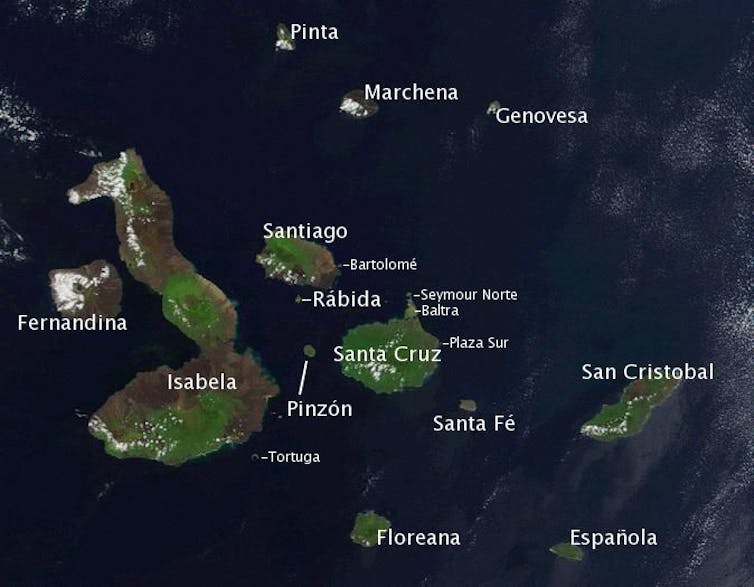 The Galapagos Islands. Credit: Wikimedia Commons