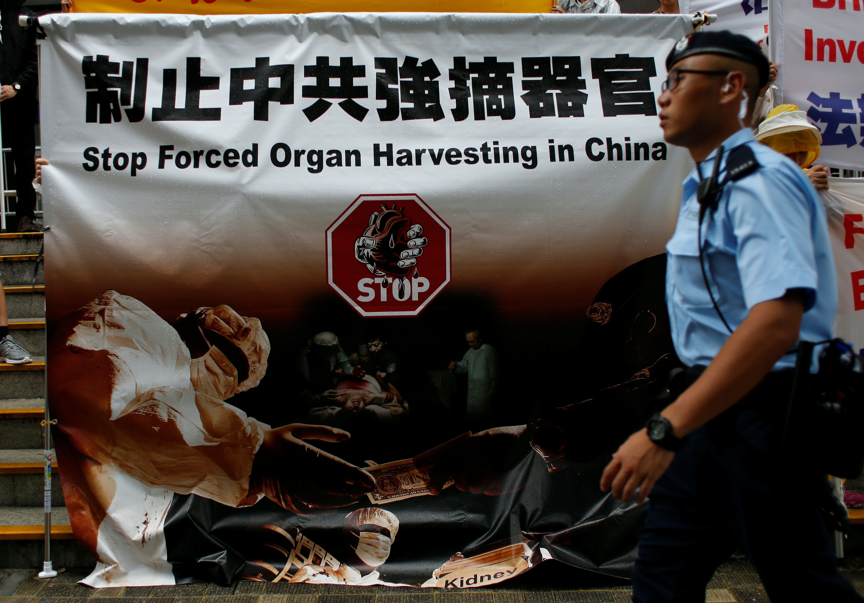 organ harvesting in china essay The international coalition to end transplant abuse in china we are a coalition of lawyers which looks at organ harvesting in china.