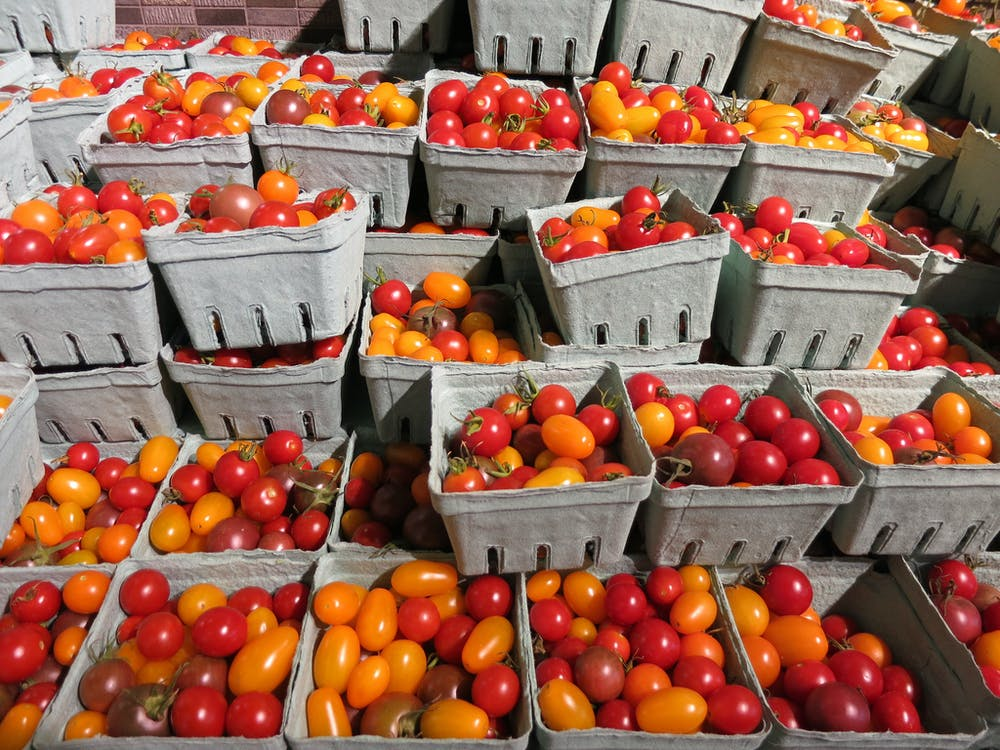 genetically modified food global viewpoints