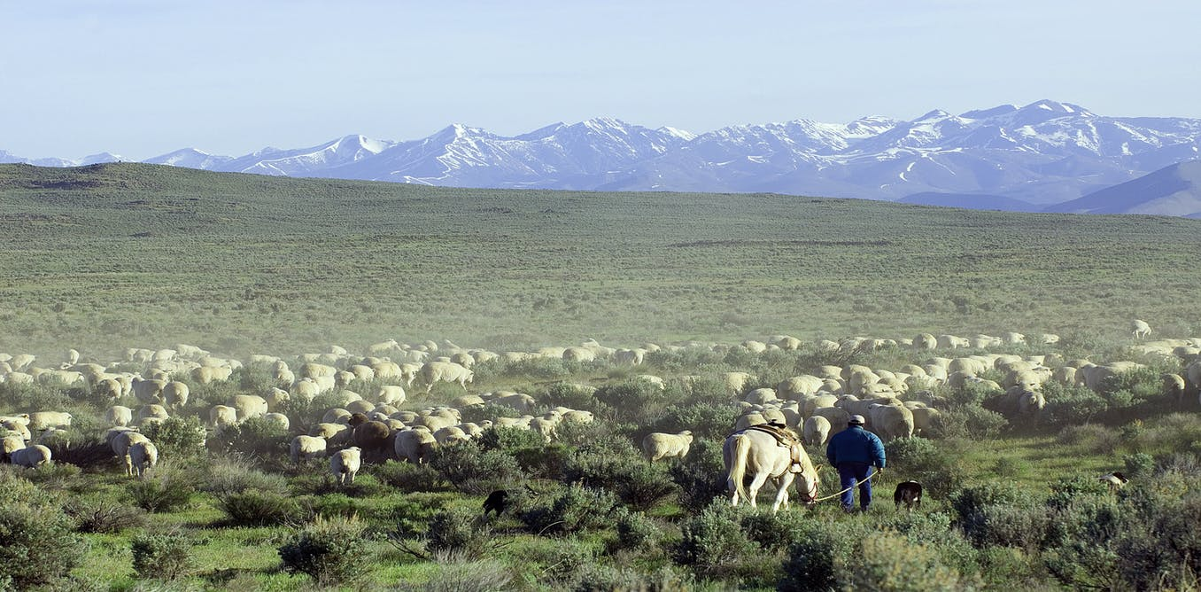In latest skirmish of western land wars, Congress supports mining and ranching