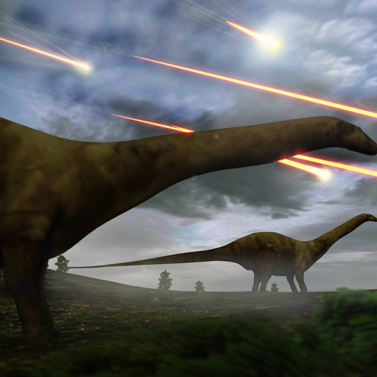 The evidence that shows dinosaurs were in decline for 40 million years  before the asteroid hit