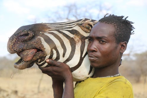 east african hunter gatherer research suggests the human microbiome