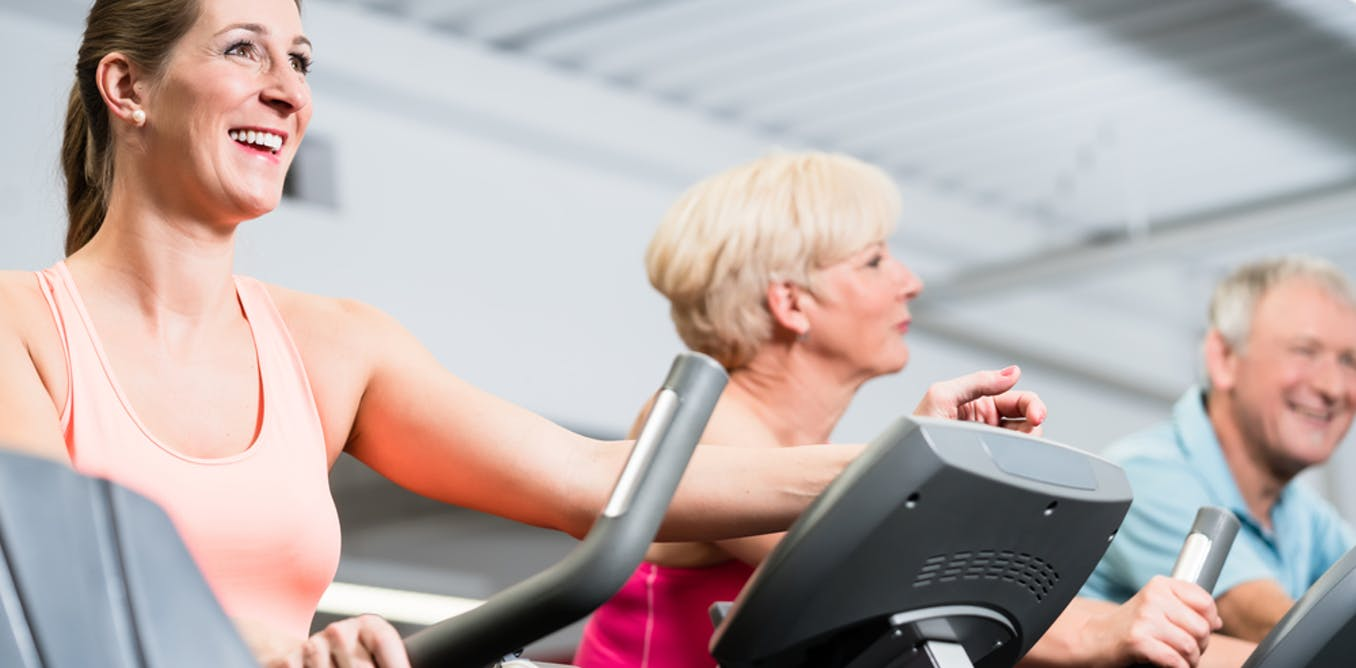 Qa How Often Do We Need To Go The Gym And Other Exercise Circuit Training Without Weights Questions Answered
