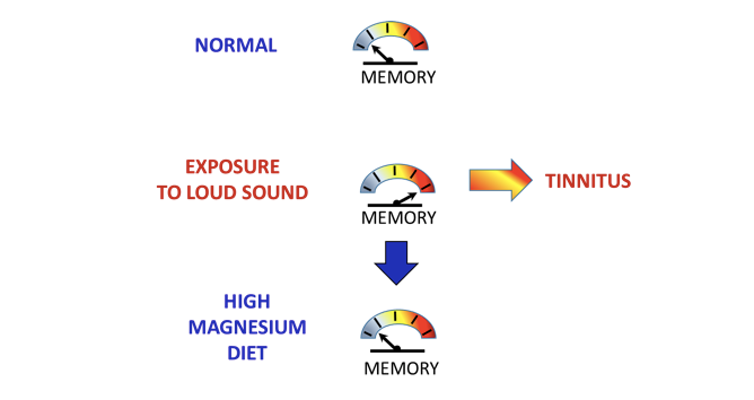 Magnesium could offer fresh hope to tinnitus sufferers