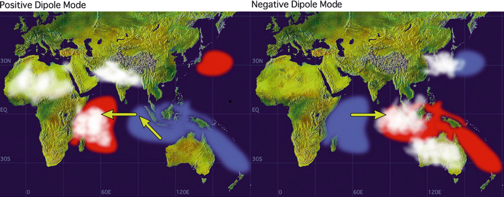 Dipole the indian nio that has brought devastating drought to sea surface temperature anomalies during indian ocean dipoles arrows indicate wind direction white patches are areas with more clouds and rain gumiabroncs Images